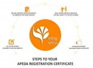 apeda-registration-noida