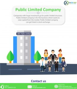 Public Limited Company