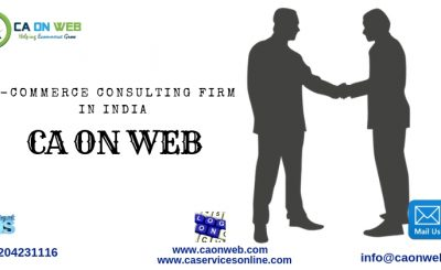 E-COMMERCE CONSULTING FIRM IN INDIA