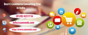 Best e-commerce consulting firm in India