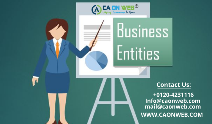 Business Entities in India